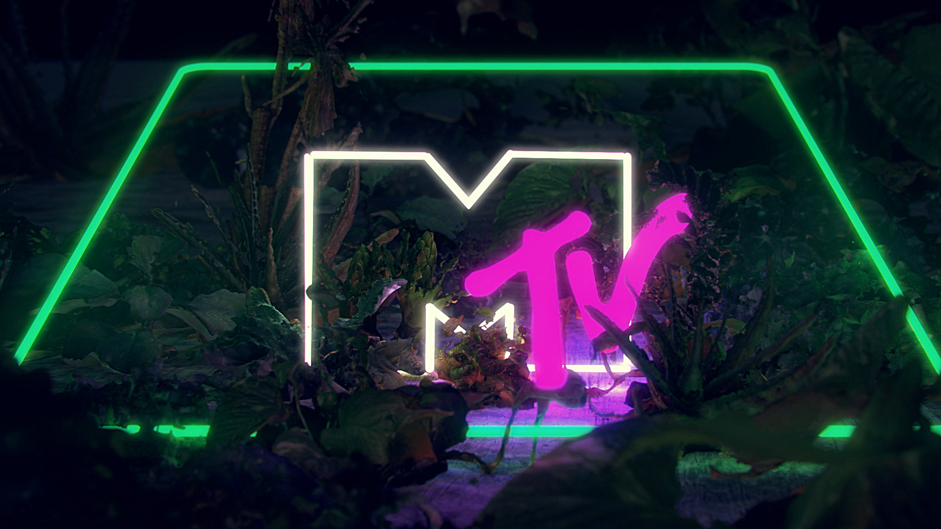 MTV Visual Ident